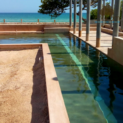 hacienda chicxulub piscina 18